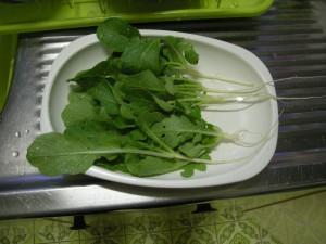 大根の間引き菜を皿に並べた写真
