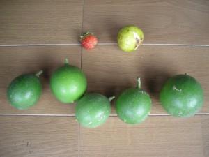 イチゴ1個、イチジク1個、青いレモン5個を並べている写真