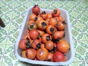容器いっぱいに入った渋柿